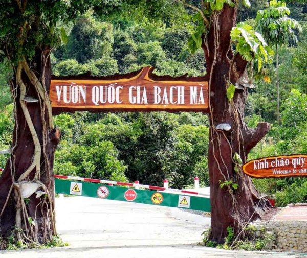 bach-ma-national-park-1