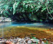 bach-ma-national-park-4