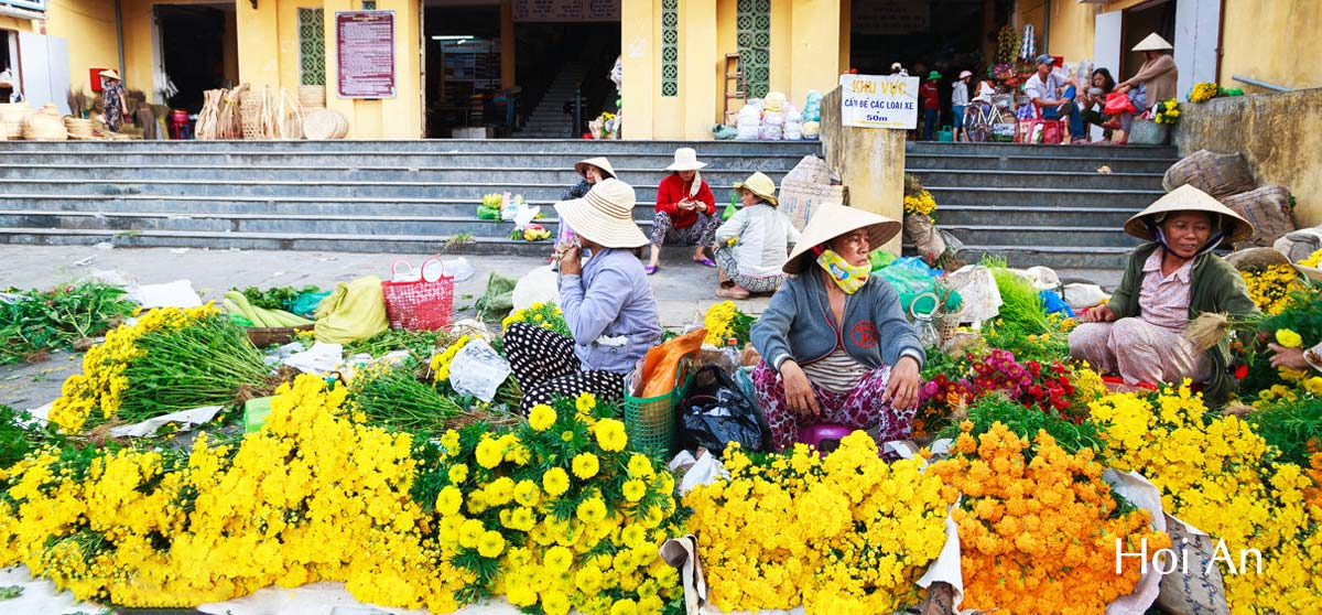 How to transfer from Hoi An to Da Nang?