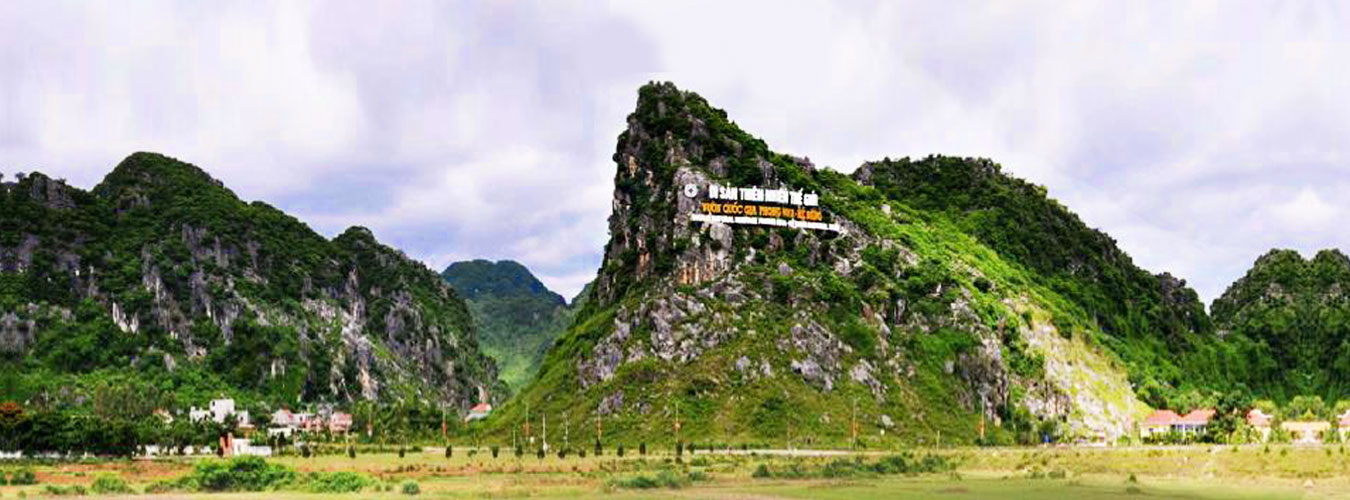 Transfer from Phong Nha to Hue by private cars