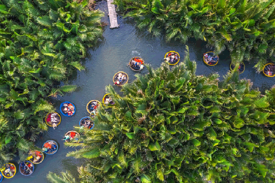 Cam Thanh Water-coconut forest HoiAn