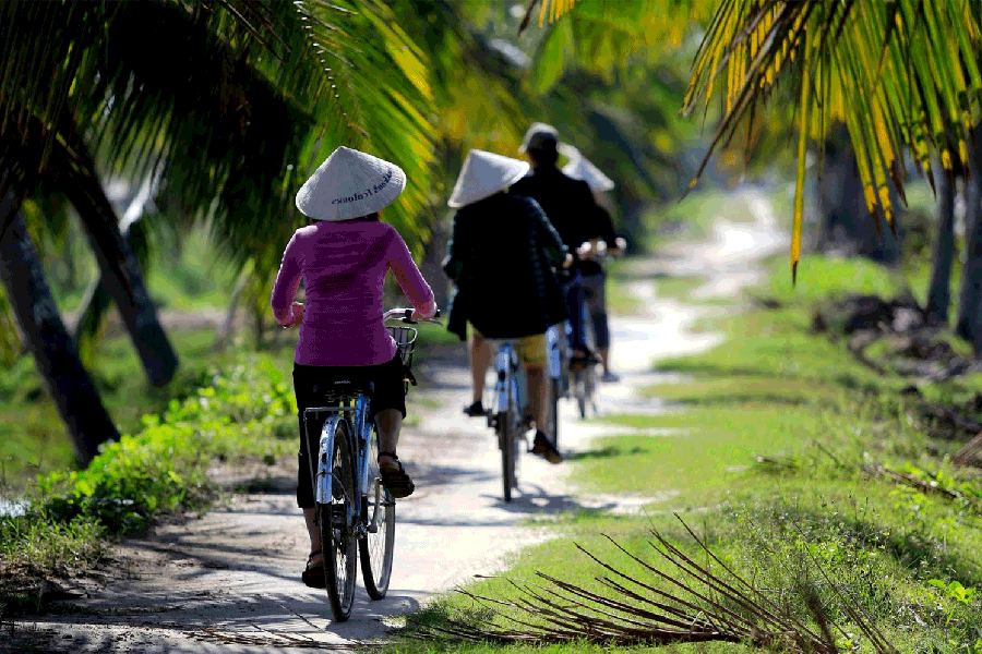 Bike tour around Hoi An